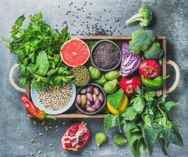 Wenn Ernährung zur Medizin wird   Interview mit Dr. Simone Frey, Geschäftsführerin bei Atlantic Food Labs