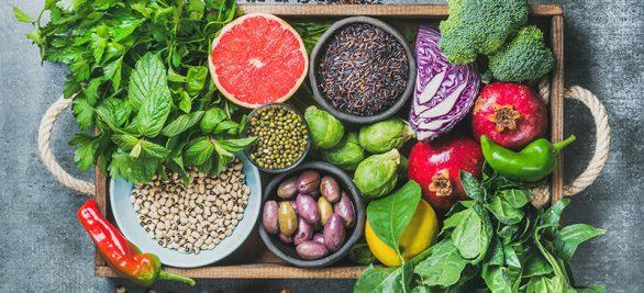 Wenn Ernährung zur Medizin wird | Interview mit Dr. Simone Frey, Geschäftsführerin bei Atlantic Food Labs